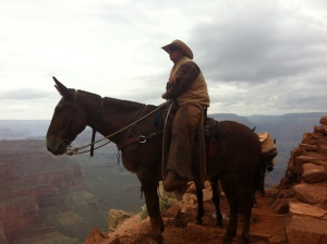 Grand Canyon - La Parisienne Trotteuse